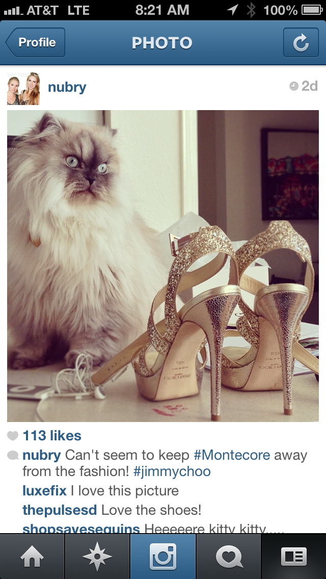Miss california pageant shoes