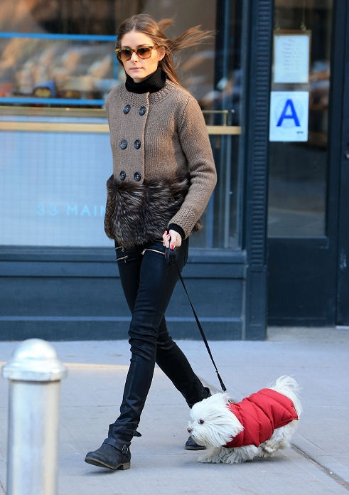 Olivia Palermo puts on her sunglasses while walking her dog Mr. Butler on a chilly morning in Brooklyn, NY