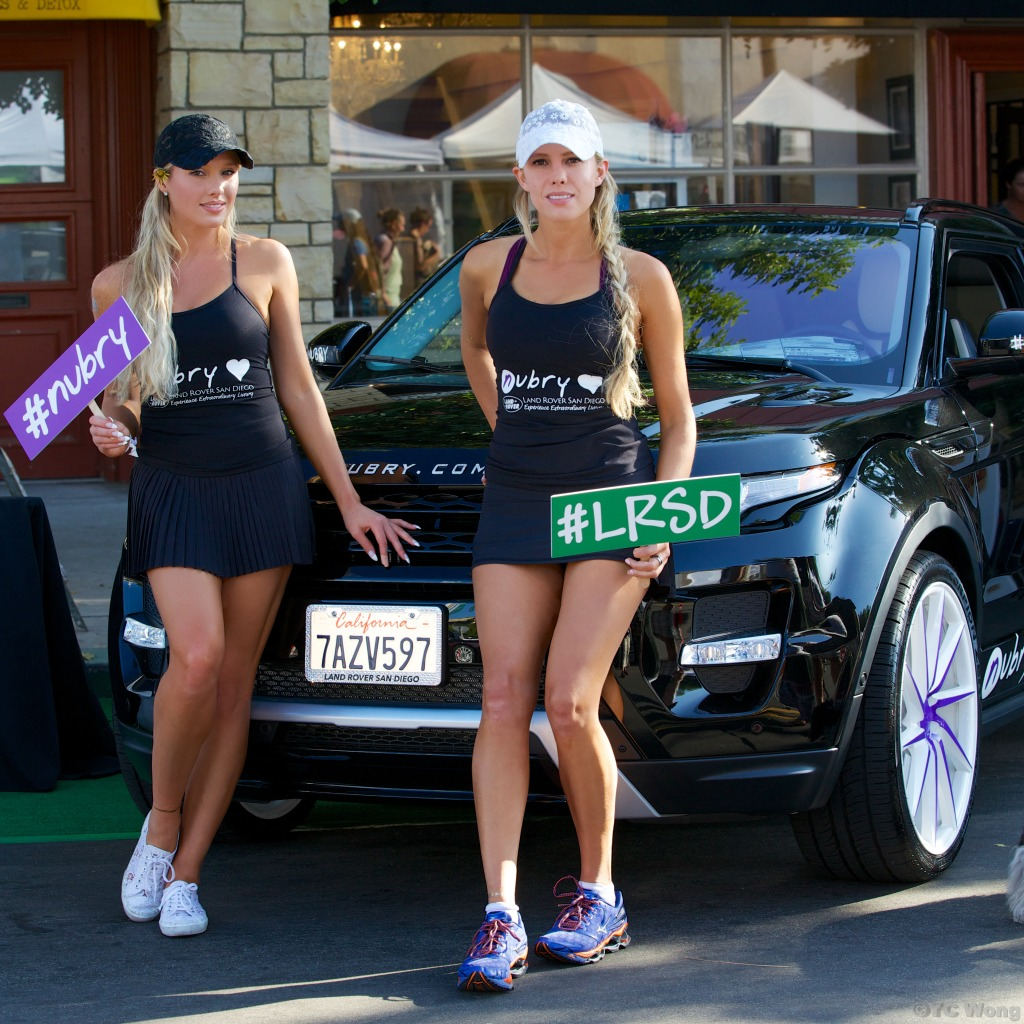 san diego events - la jolla art and wine festival - land rover san diego lounge - nubry edition evoque