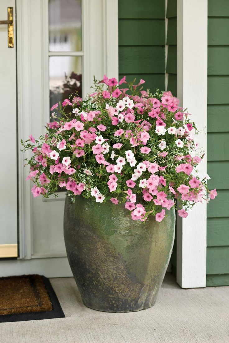 flower pots for summer porch refresh