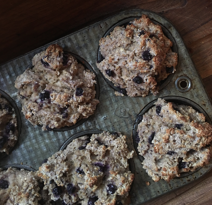 gluten free blueberry muffins - made in oven while glamping